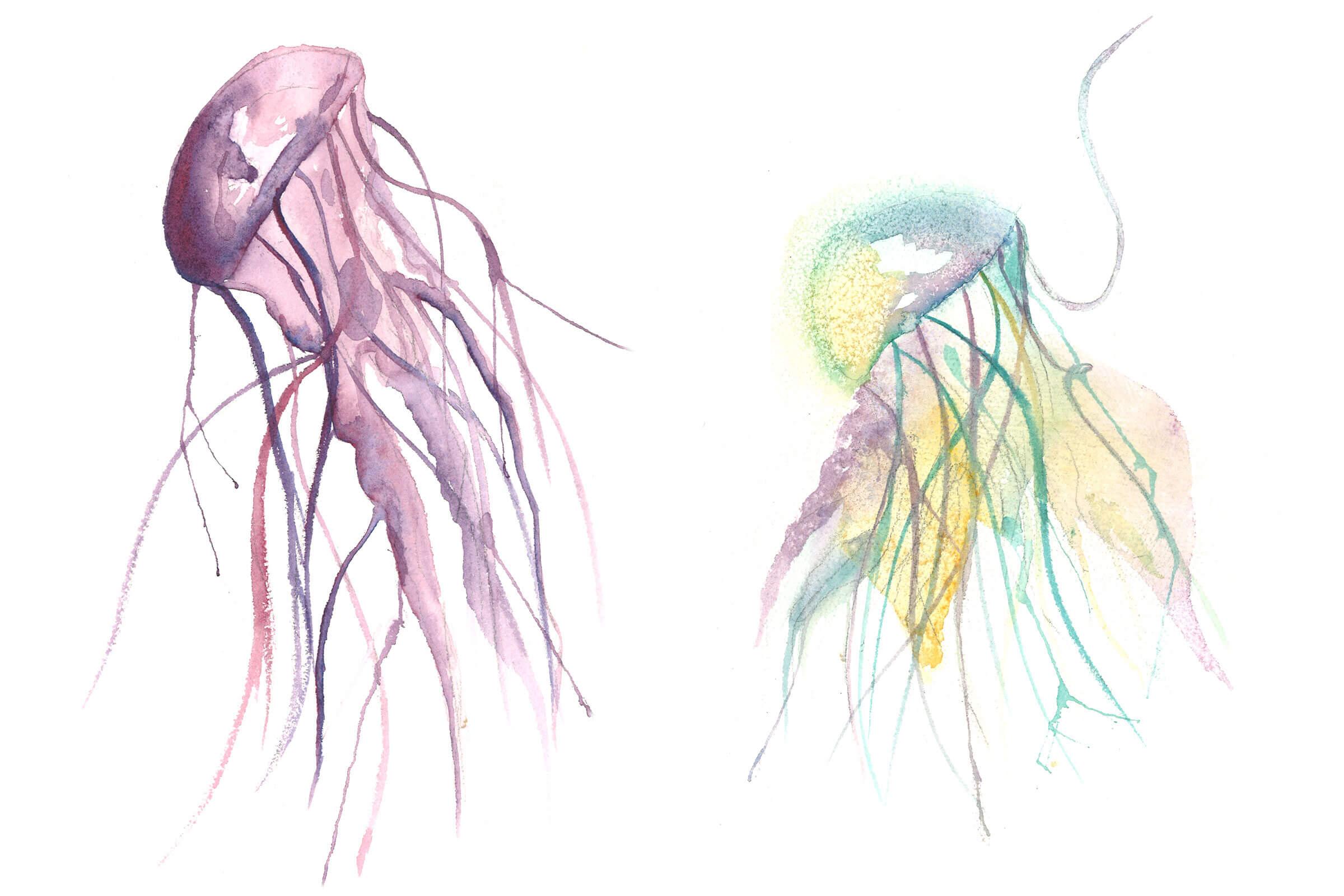 Watercolors_2400x1600